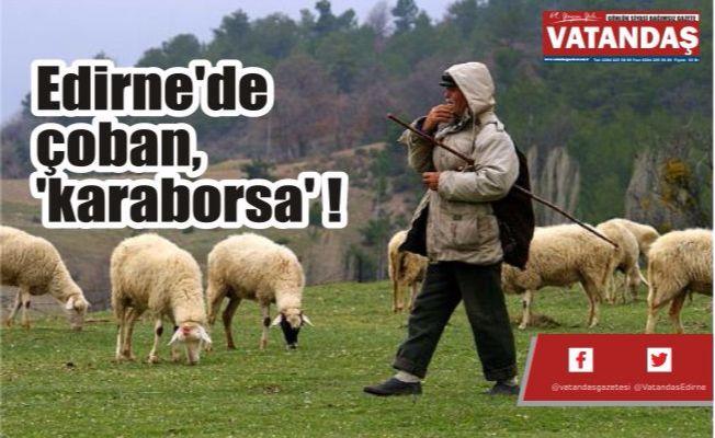 Edirne'de çoban, 'karaborsa' !