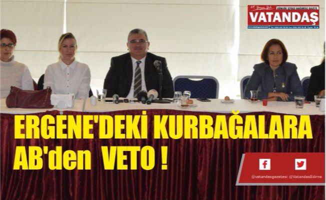 ERGENE'DEKİ KURBAĞALARA AB'den  VETO !