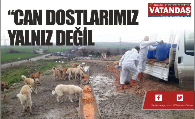 """""""CAN DOSTLARIMIZ YALNIZ DEĞİL"""
