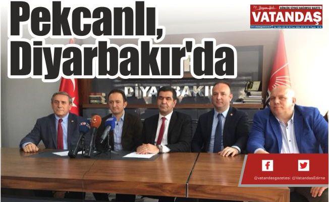 Pekcanlı, Diyarbakır'da