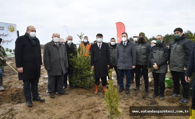 """Vali Canalp; """"Edirne'de Orman Alanlarımızı Arttırmaya Devam Ediyoruz"""""""