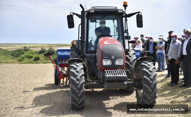 Vali Canalp traktör ile çeltik ekimi yaptı