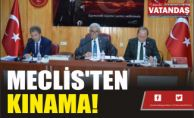 MECLİS'TEN  KINAMA!