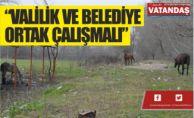 """""""VALİLİK VE BELEDİYE ORTAK ÇALIŞMALI"""""""