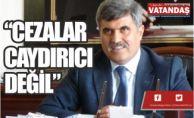 """""""CEZALAR CAYDIRICI DEĞİL"""""""
